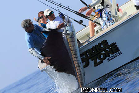 Louisiana | Strike Zone Charters