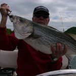 Tennessee | Stripers and Moore